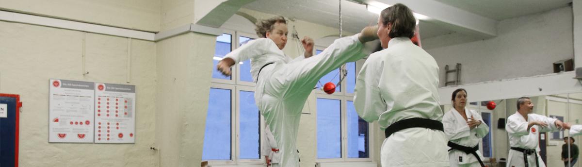 Banner_Karate41200px_Breite