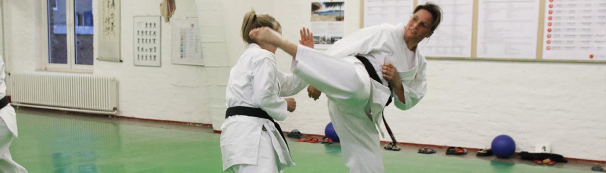 Banner_Karate5_1200px_Breite
