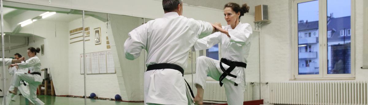 Banner_Karate6_1200px_Breite