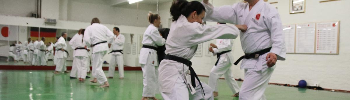 Banner_Karate9_1200px_Breite